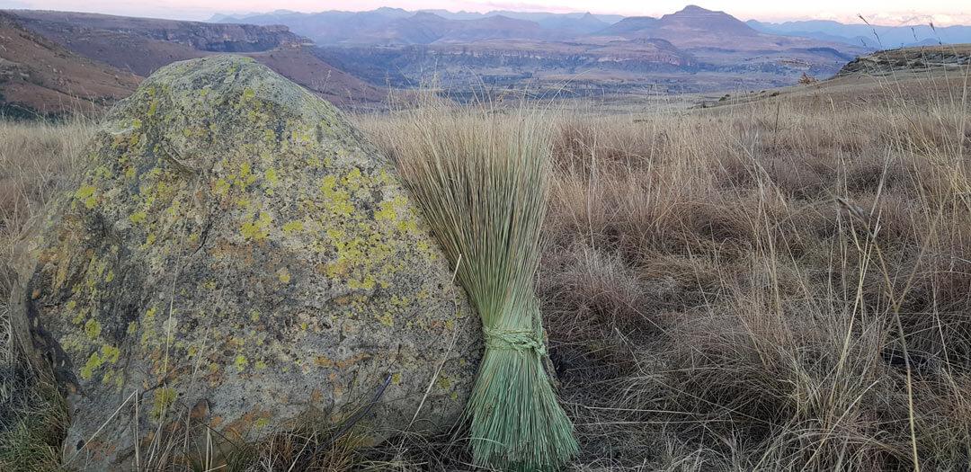 Weaving grass